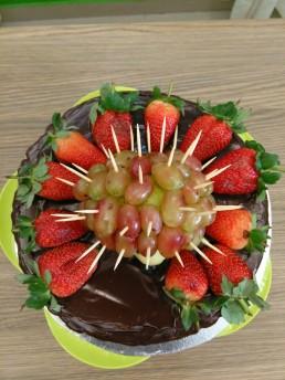 Aerial hedgehog choc cake